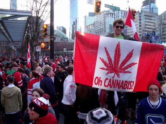 Legalization of Marijuana: what are the effects for Canadian Residents